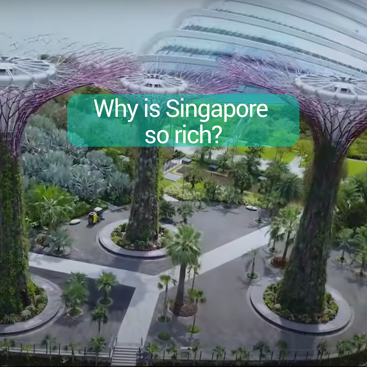 why-is-singapore-so-rich